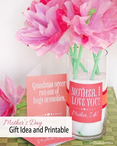 Make Mother Day Simple Easy Mothers Gift