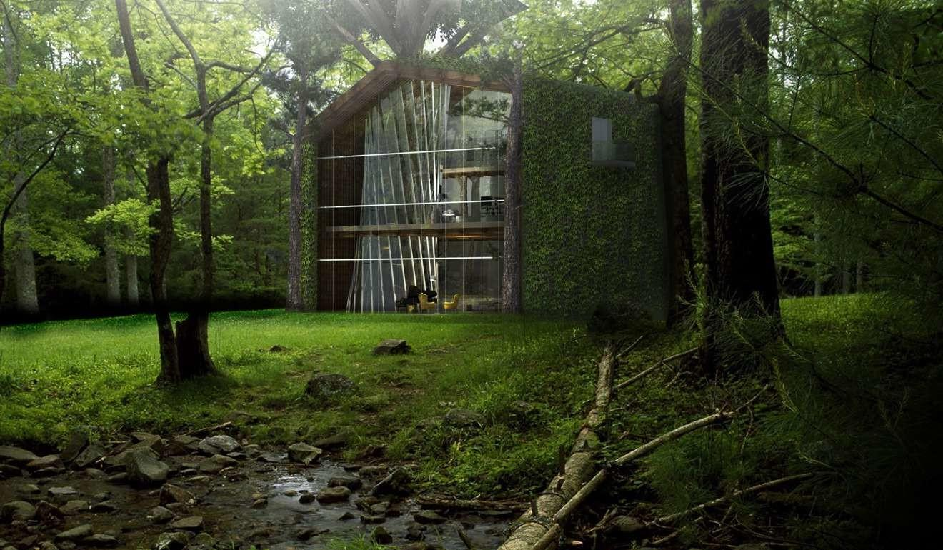 Million Eco Friendly Treehouse Collects Water