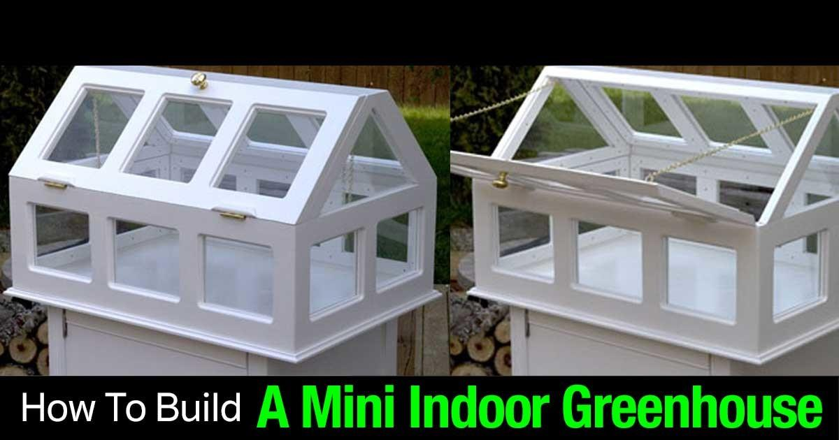 Mini Indoor Greenhouse Gardening Guide