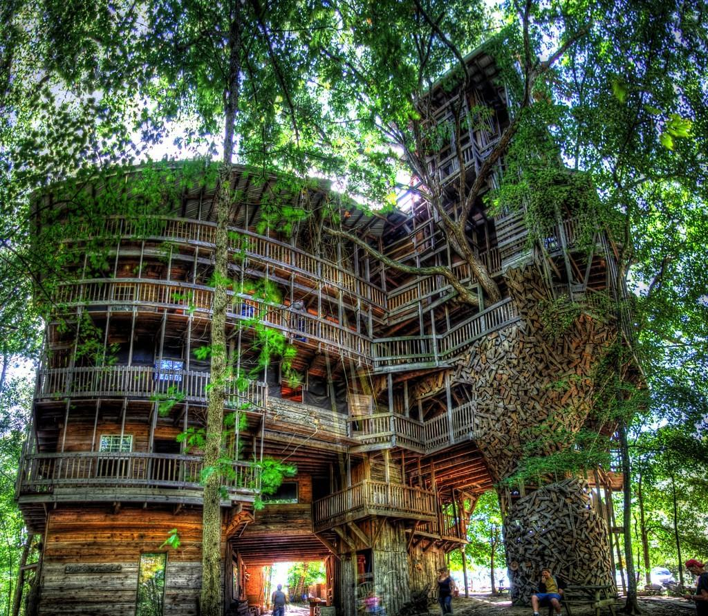 Minister Tree House Largest