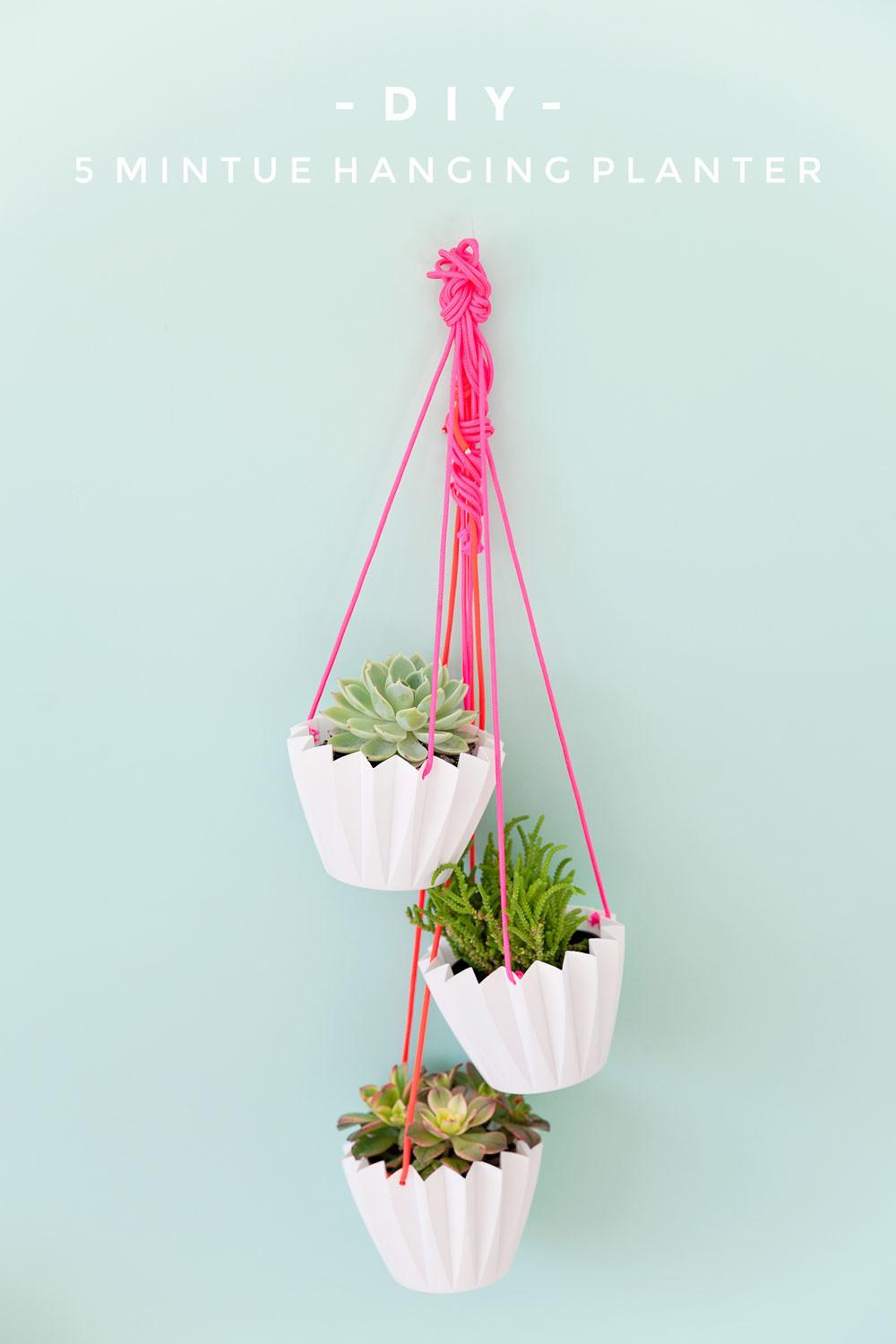 Minute Diy Hanging Planters Tell Love Partytell