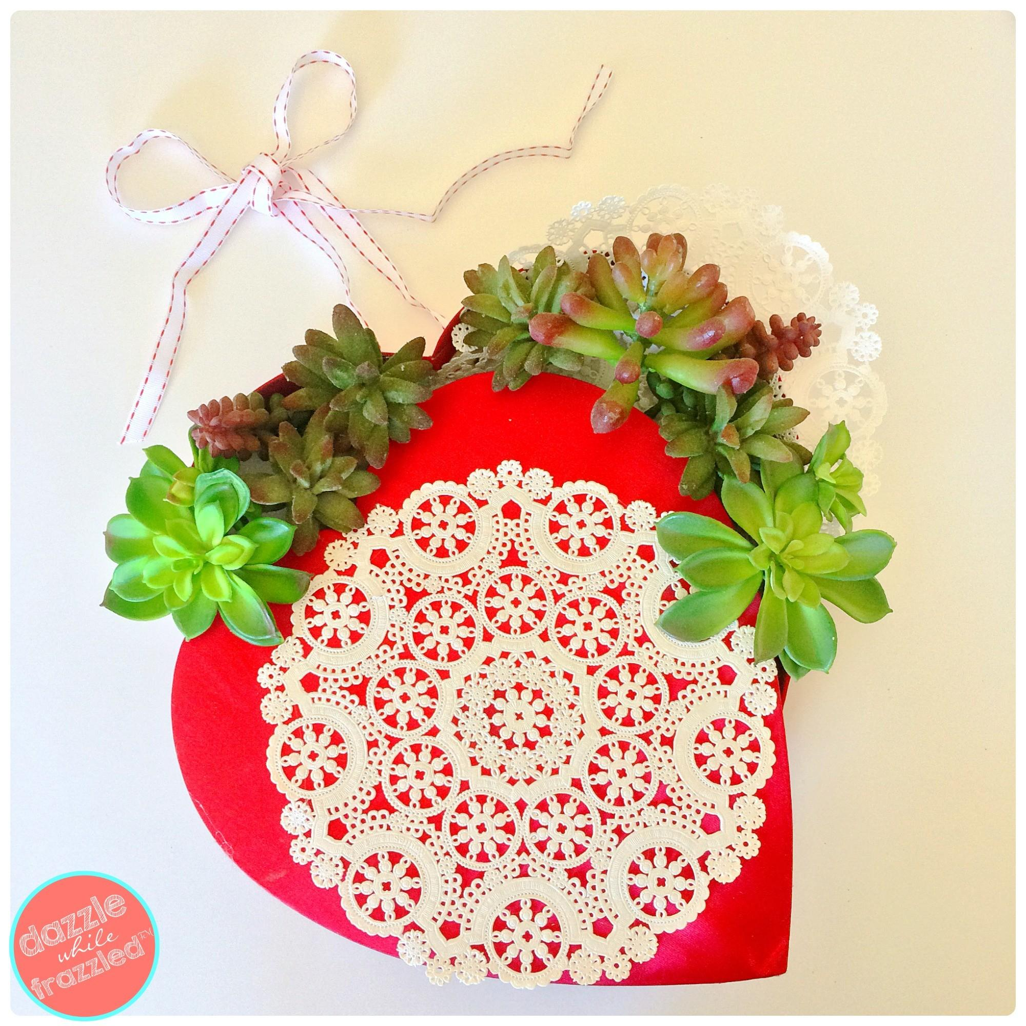 Minute Diy Succulent Valentine Day Wreath