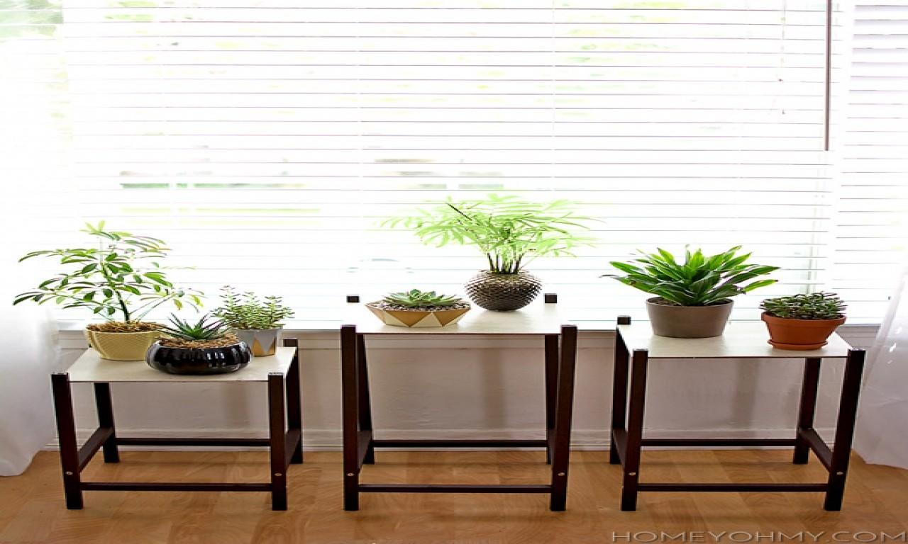 Modern Pedestal Plant Stand Yourself Stands