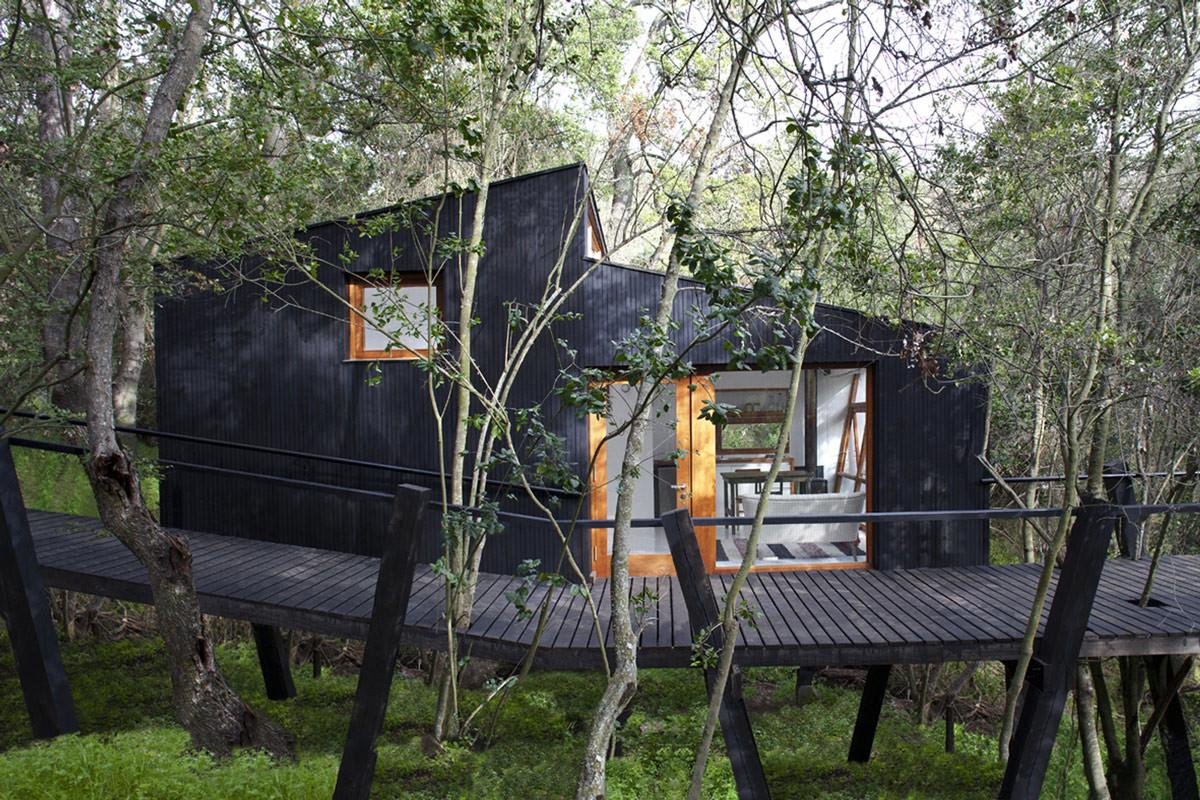 Modern Tree House Curacav Chile