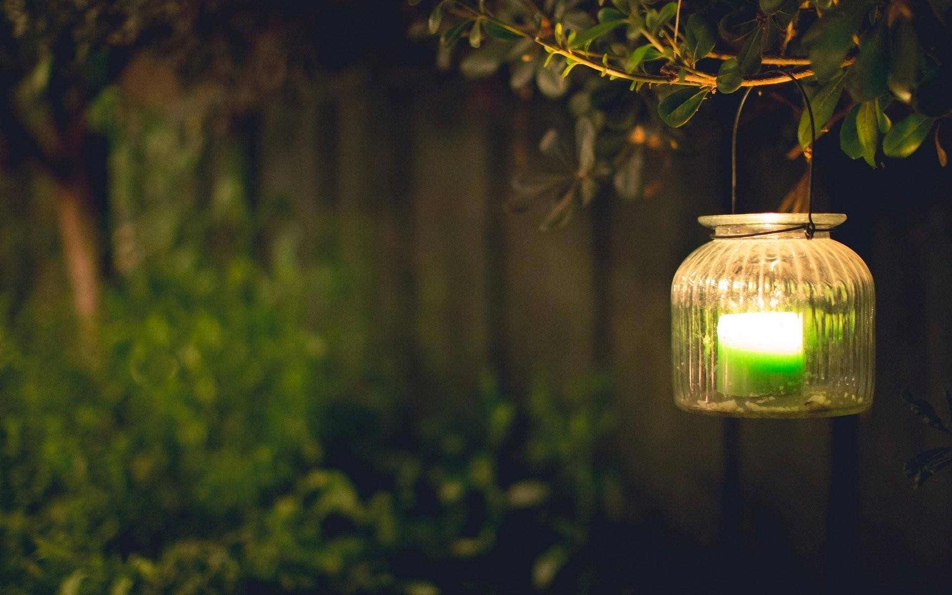 Mood Light Lamps Green Candle Leaves Branch Blur