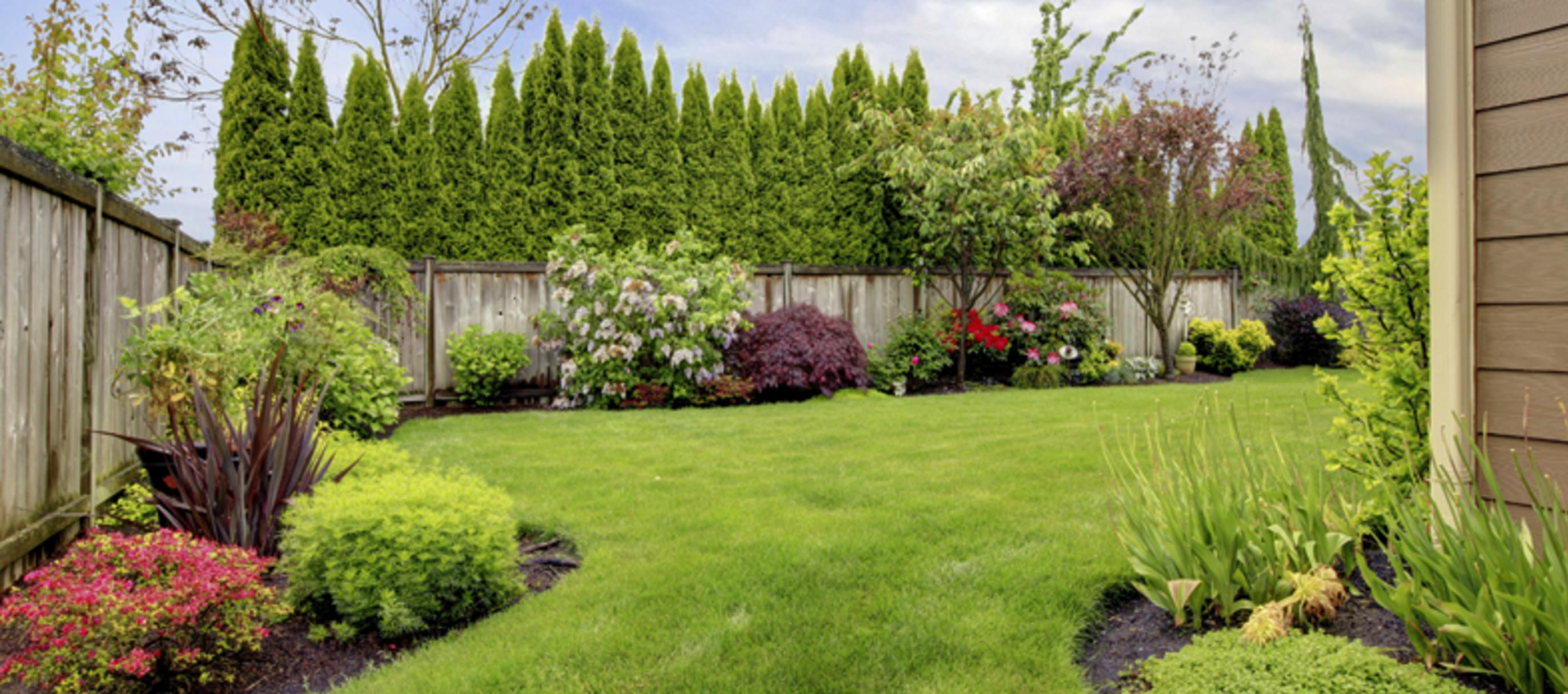 More Than Curb Appeal Why Landscaping Important Lawnmore