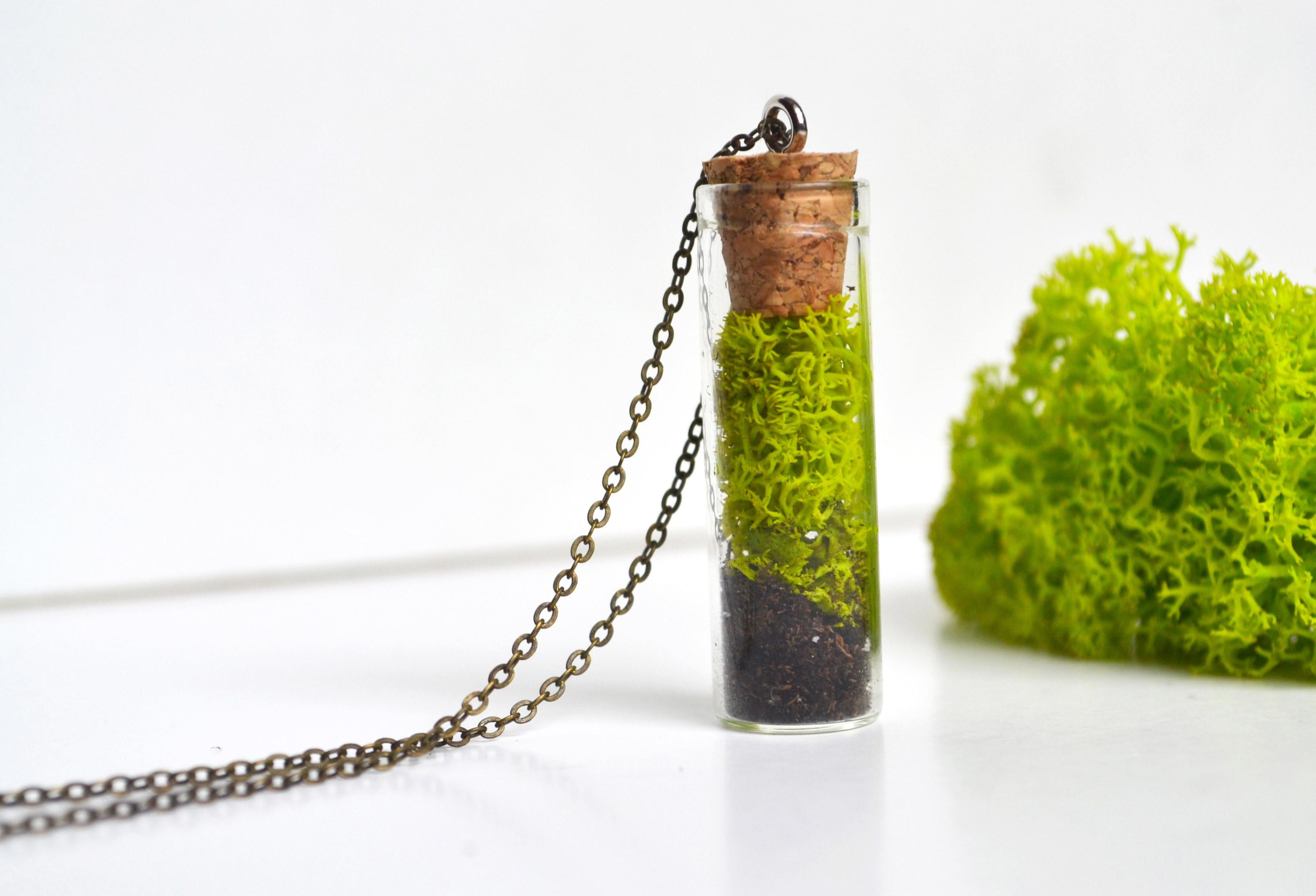 Moss Necklace Nature Lover Gift Vial Plant
