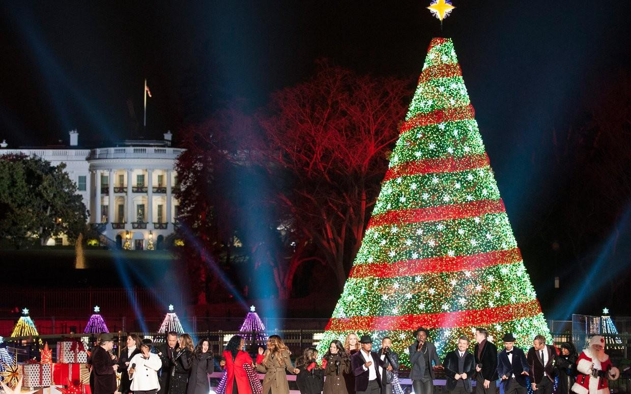 Most Beautiful Christmas Trees America