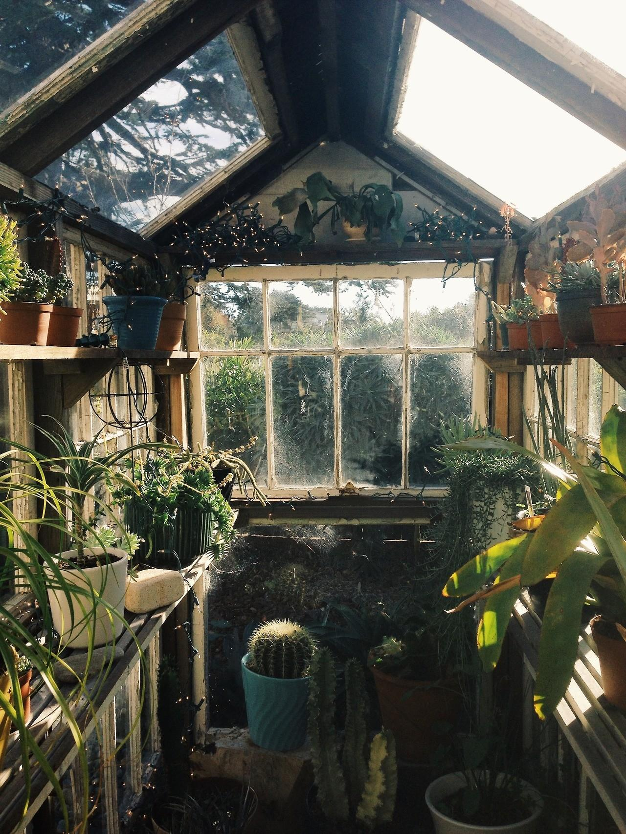 Most Beautiful Greenhouses Spring Inspiration