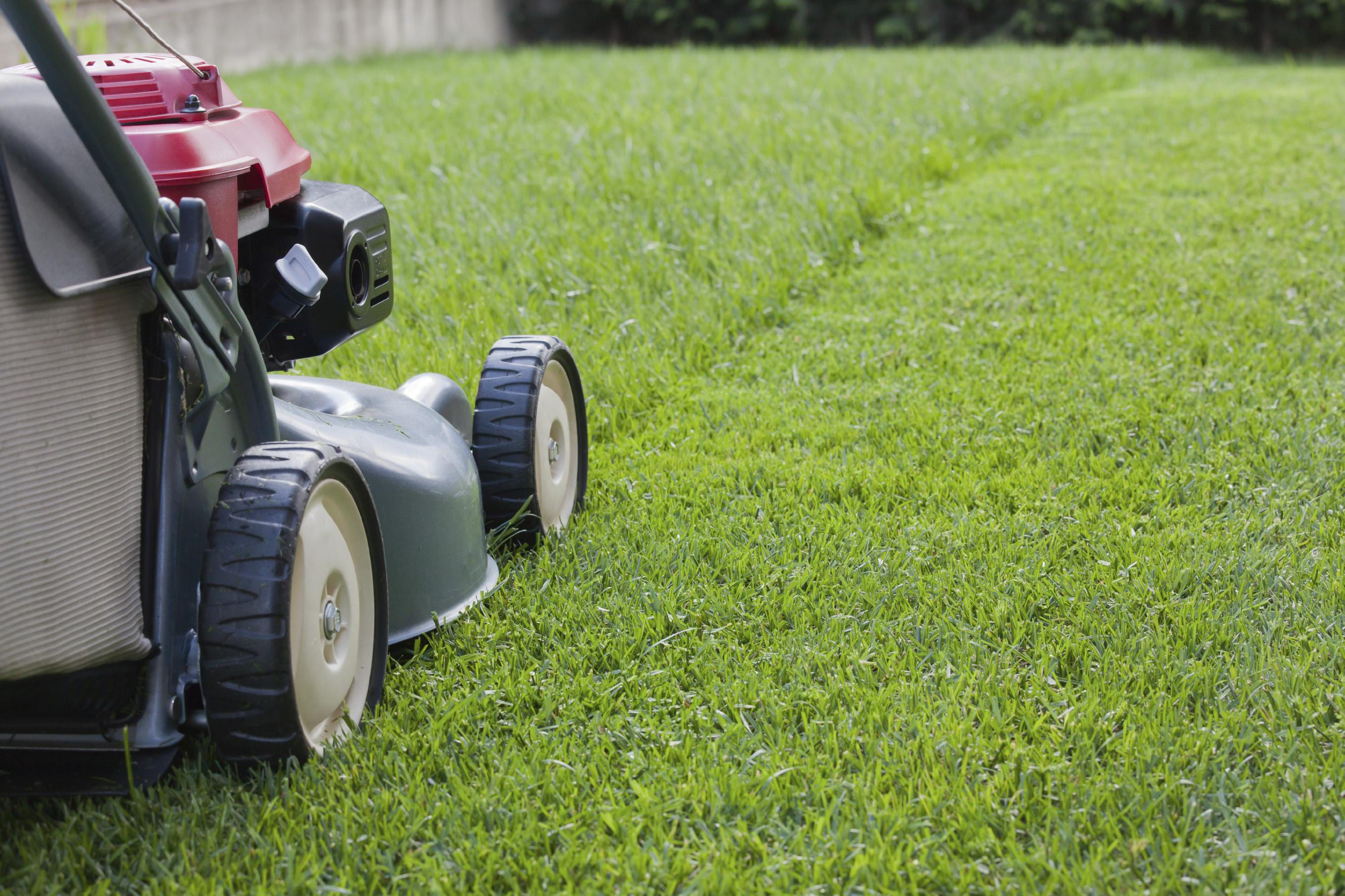 Mowing Healthier Lawn Engledow Group