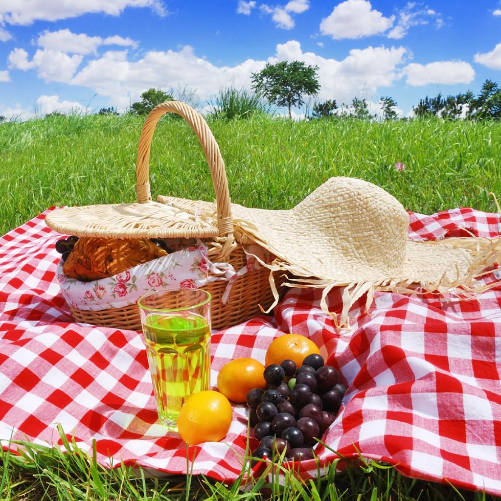 Must Have Picnic Accessories Improve Your Outdoor