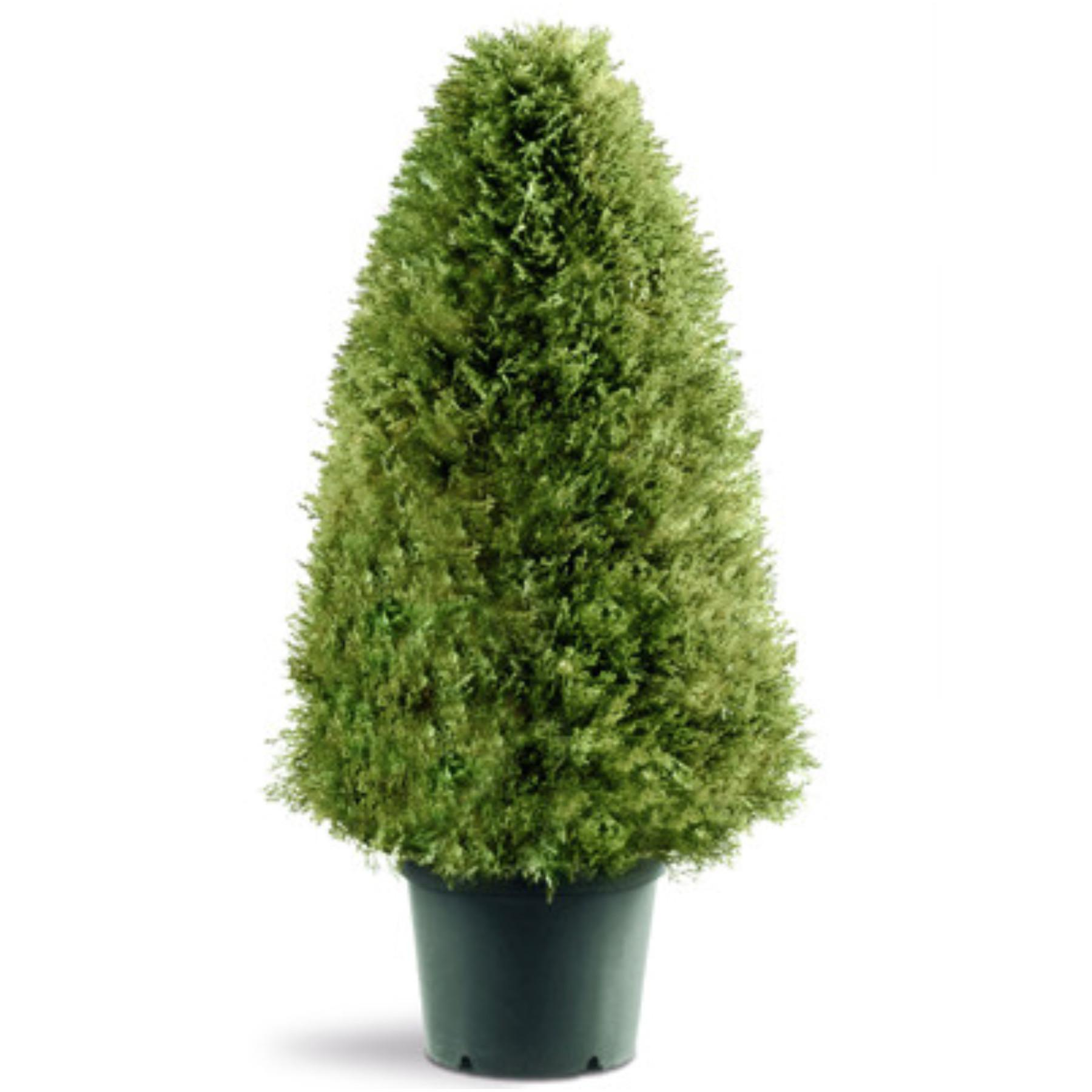 National Tree Potted Artificial Rounded Triangular