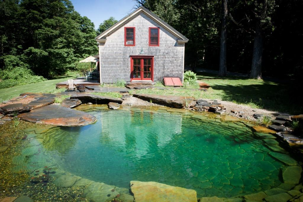 Natural Pool Back House Looks Better Than