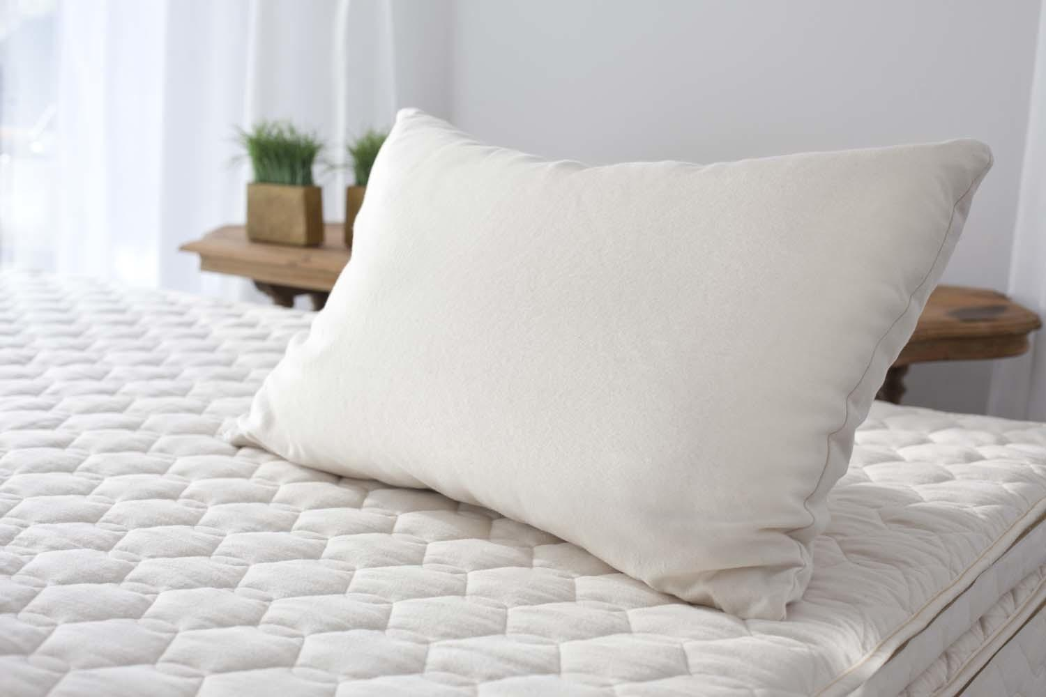 Natural Shredded Latex Pillow Savvy Rest