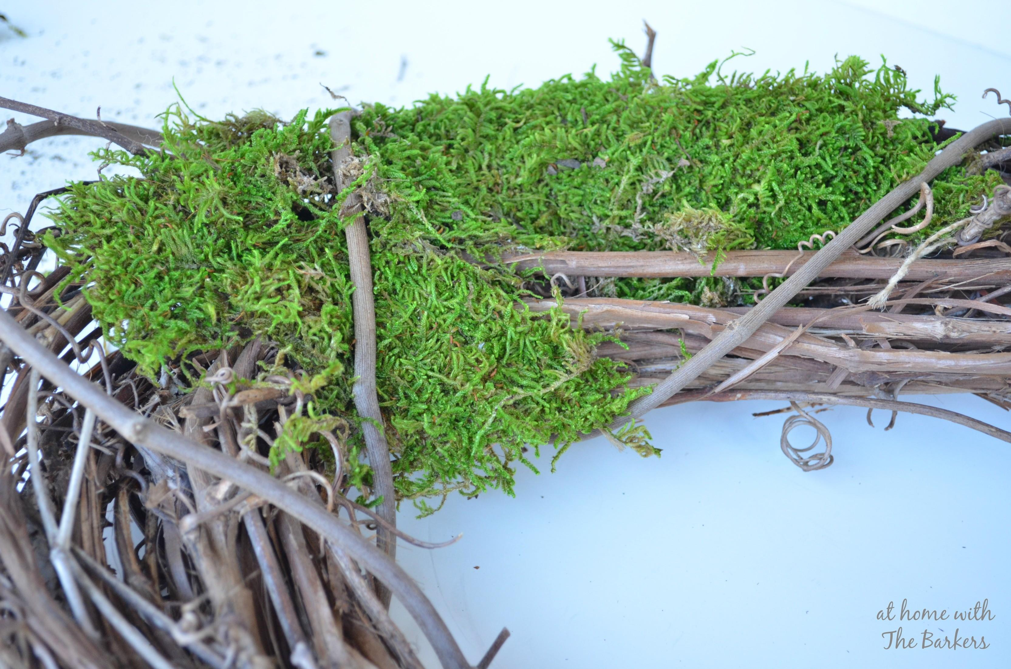 Natural Spring Wreath Grapevine Moss Home