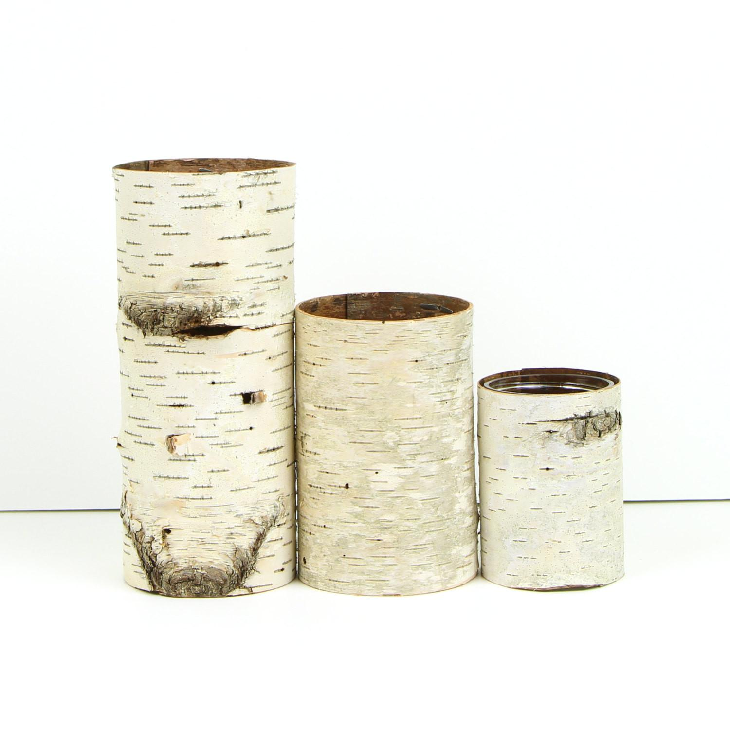 Natural Style Lovely Birch Bark Finds