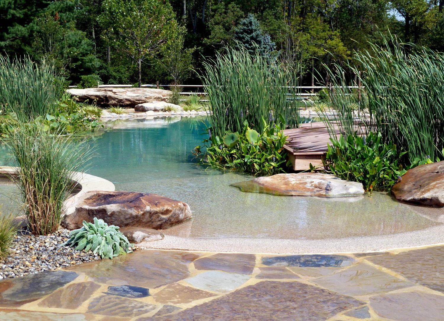 Natural Swimming Pools Work Best Warm Climates
