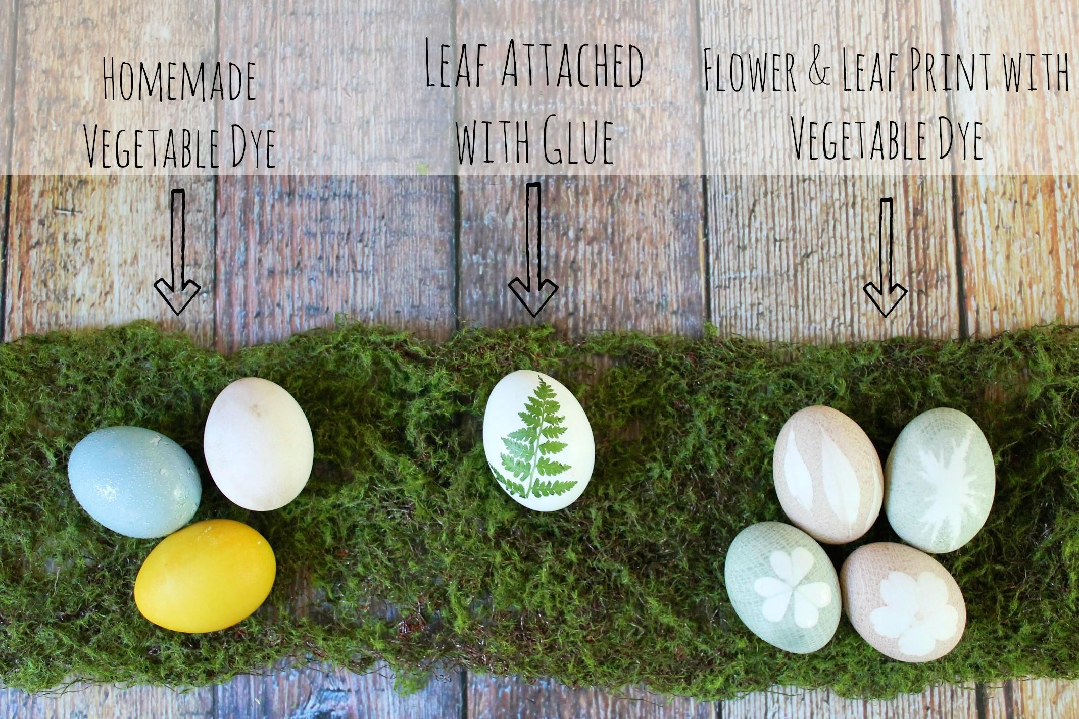 Naturally Dyed Easter Eggs Dabblist