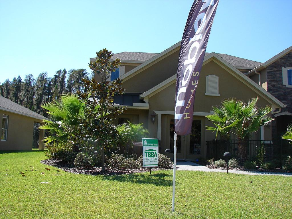 New Tampa Real Estate Mobley Single Family Homes