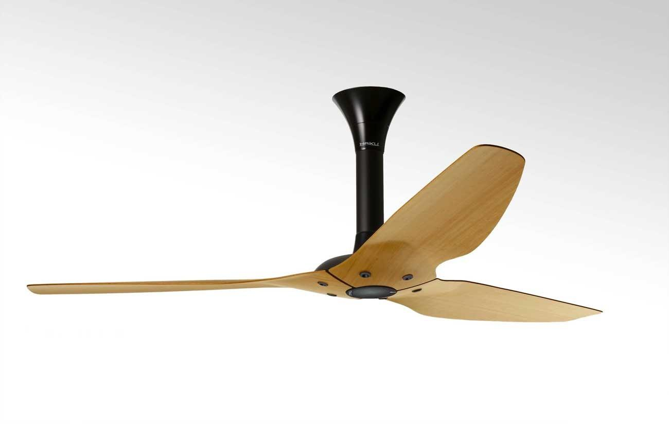 Newknowledgebase Blogs Haiku Ceiling Fan