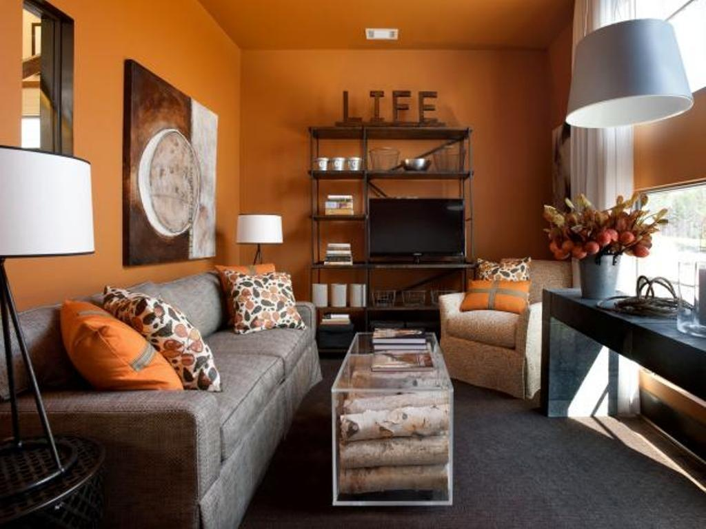 Nice Paint Colors Living Room Walls Dark