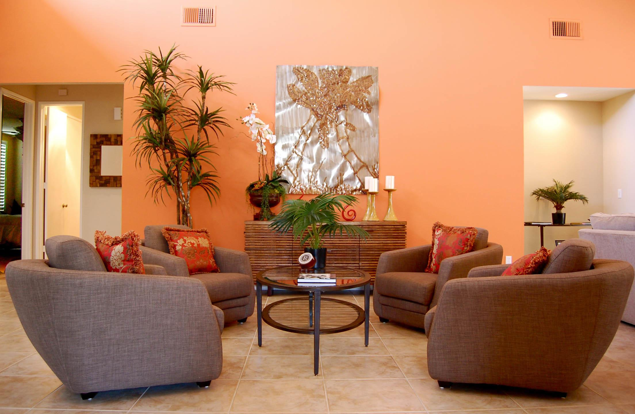 Orange Decorations Living Room