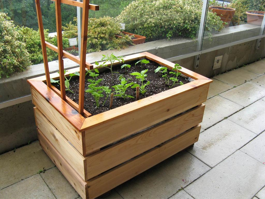 Organic Vegetable Balcony Garden Box Laura Flickr