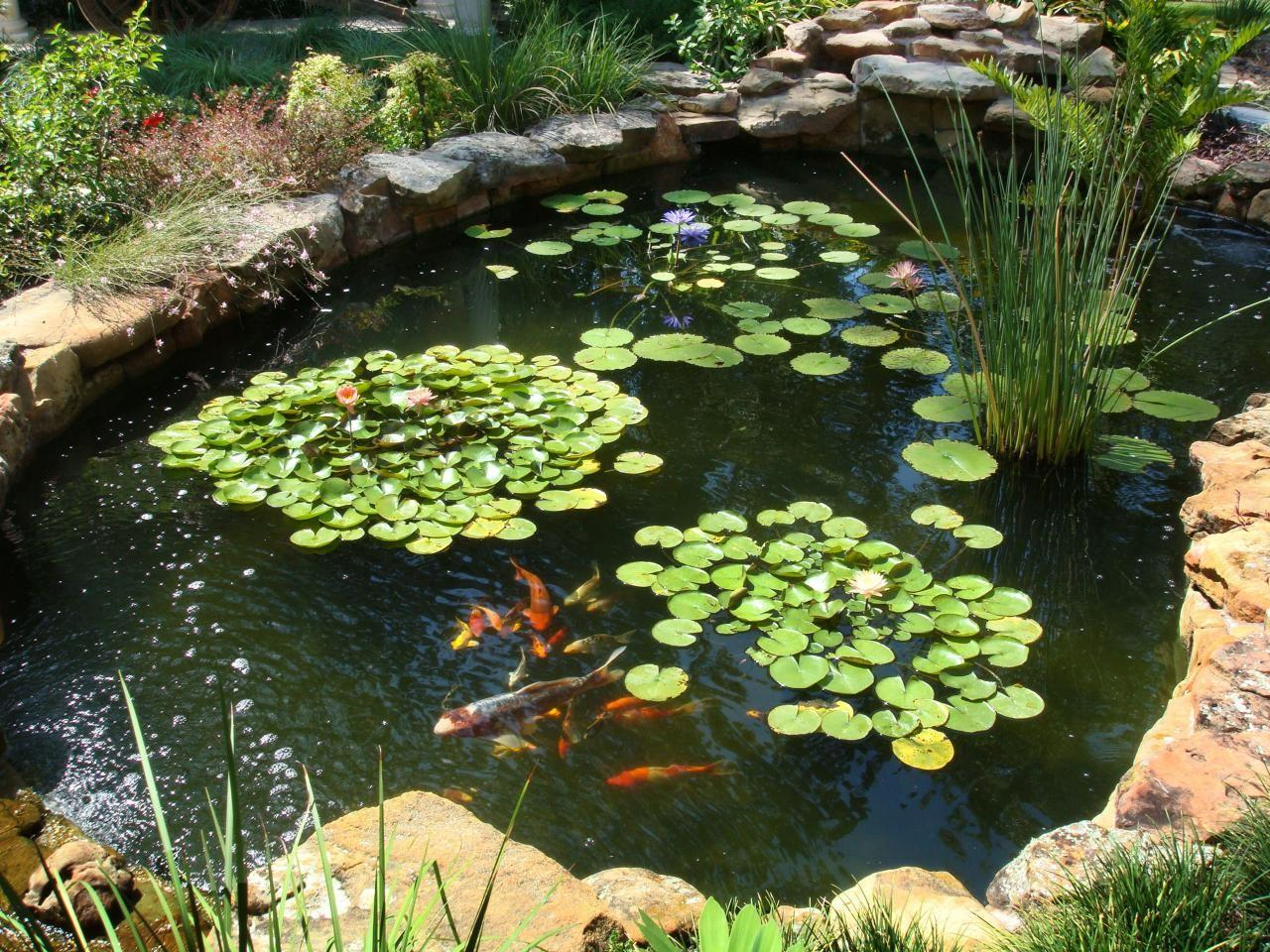 Our Favorite Garden Ponds Fans Landscaping