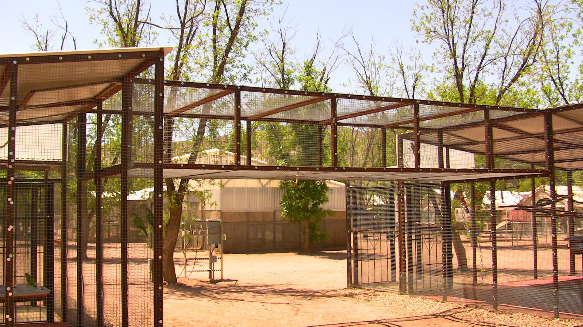 Outdoor Bird Cage Plans Cages