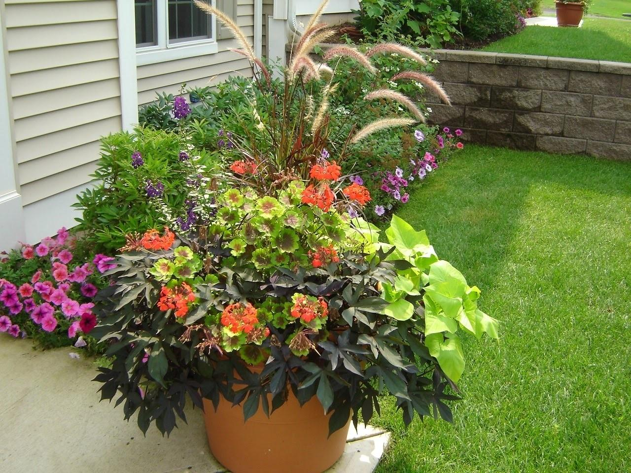 Outdoor Flower Pot Ideas Idea