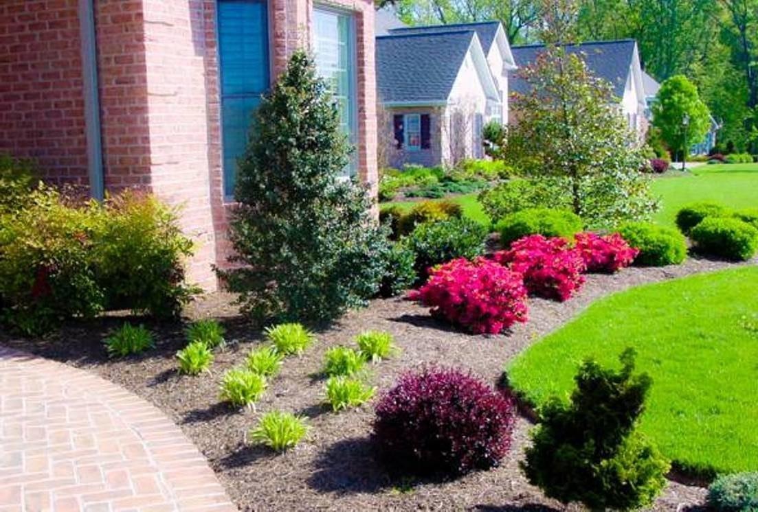 Resourceful Ideas To Landscape With Shrubs That Everyone Will