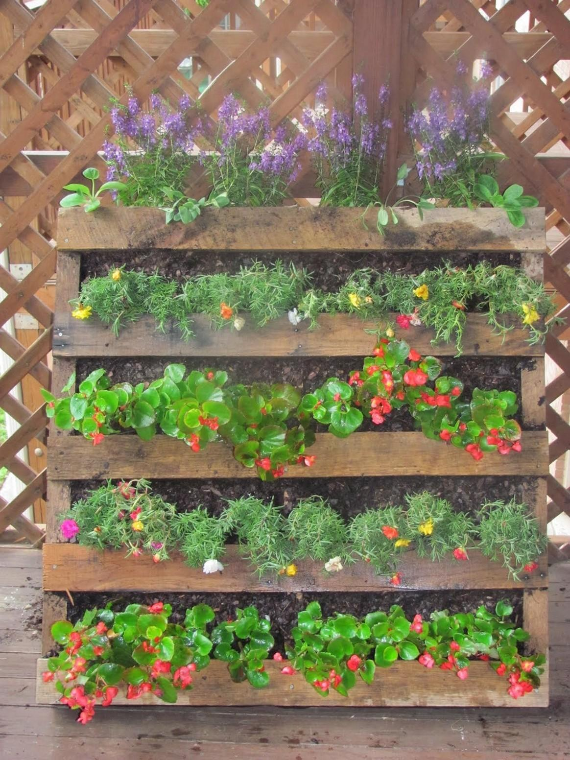 Pallet Herb Garden Solution Limited Space