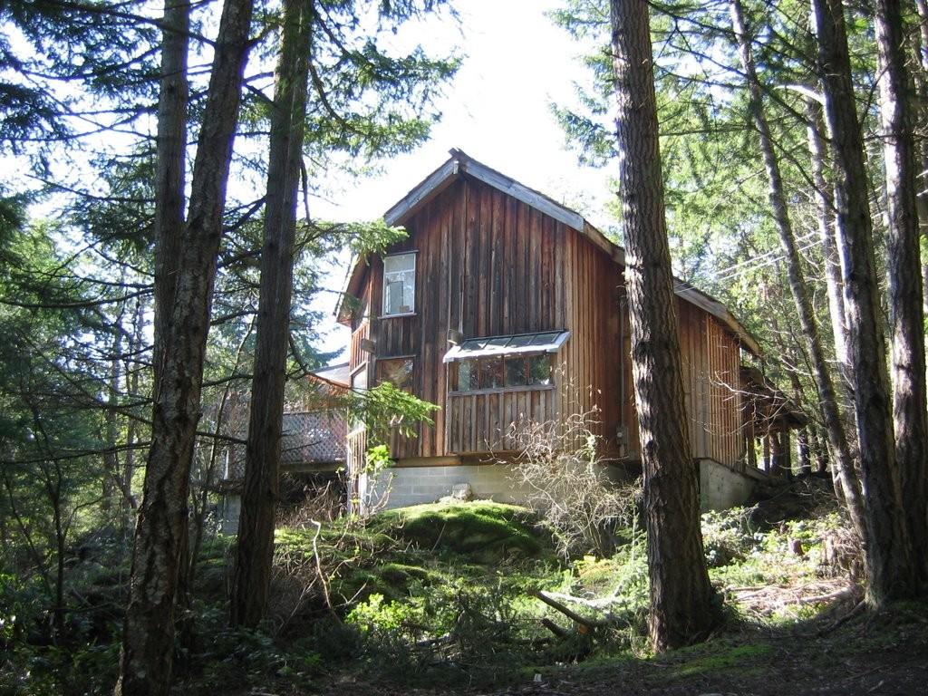 Panoramio Old House Woods