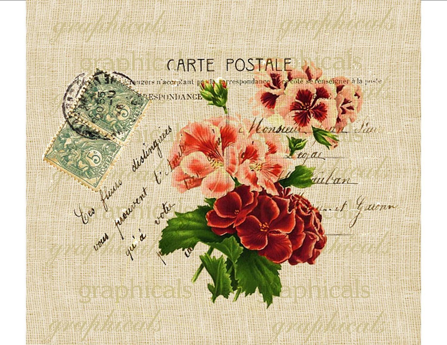 Paris Decor Geraniums Instant Clip Art Carte Postale Digital