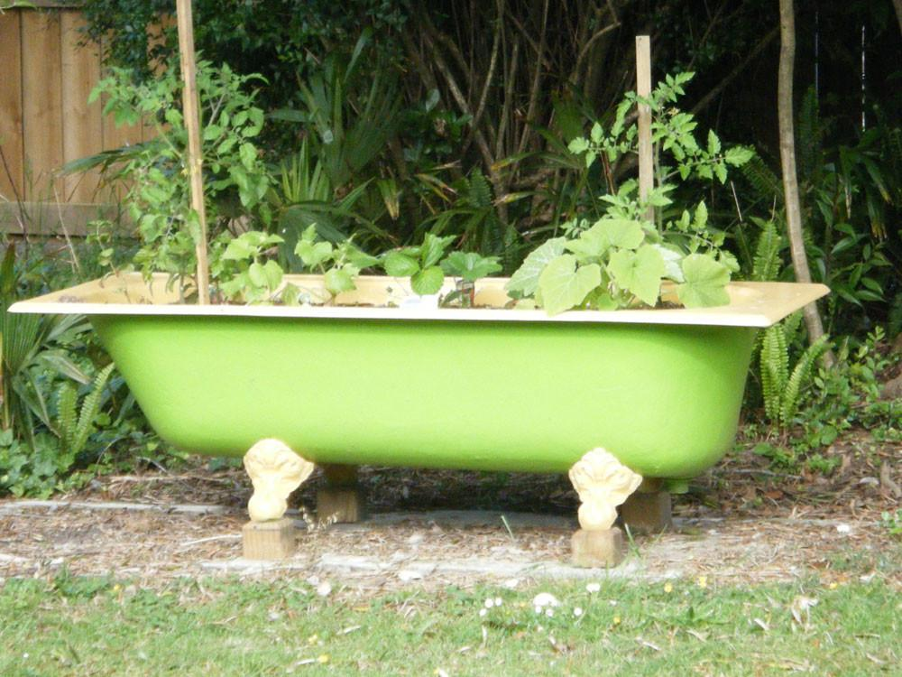 Patch Scratch Herb Baths Couches Cast Iron