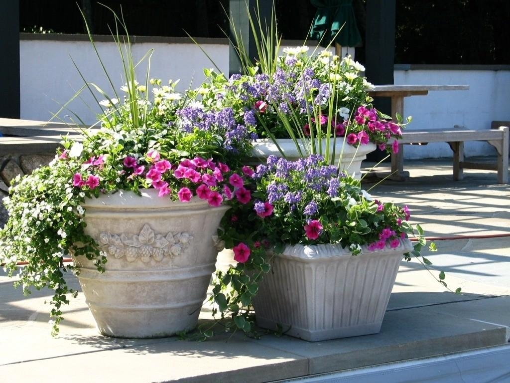Patio Flower Boxes Ideas Idea