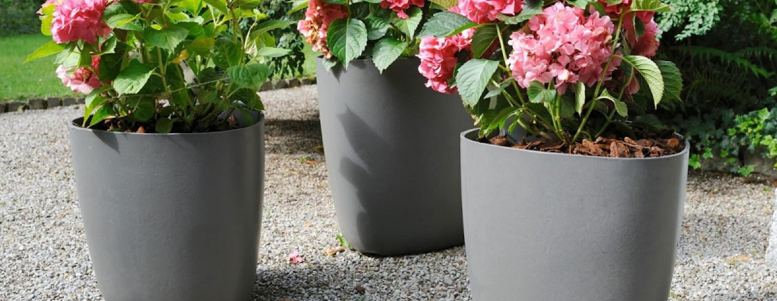 Patio Planters Plant Ideas Love Garden Outside Flower