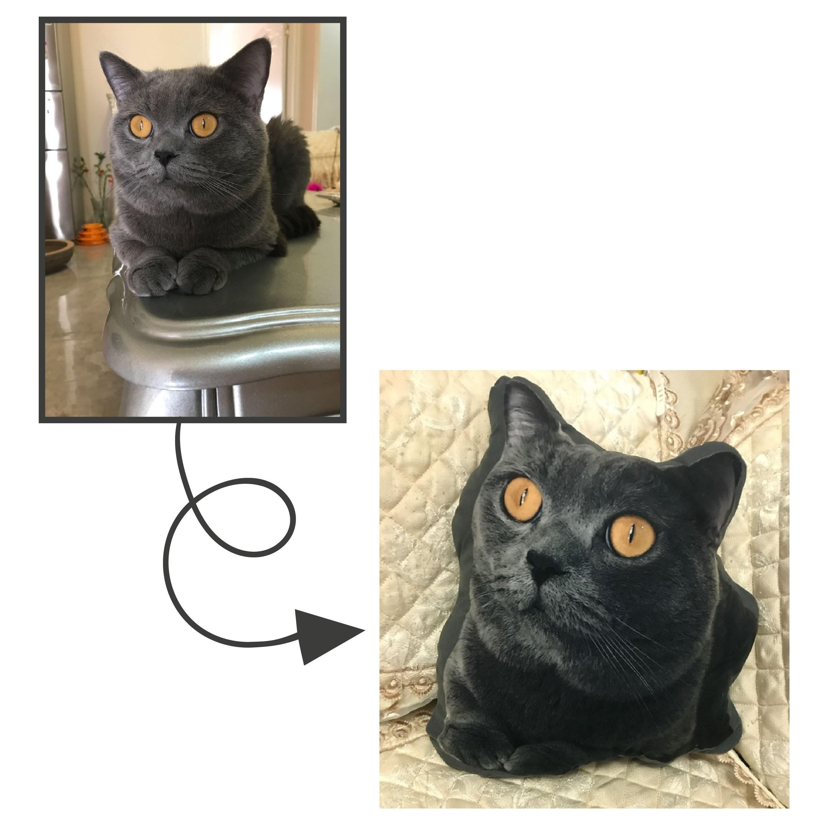 Personalized Cat Pillow Your