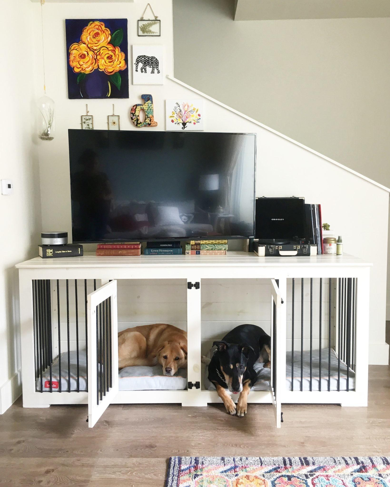 Pet Owner Delight Beautiful Dog Nooks Add Your