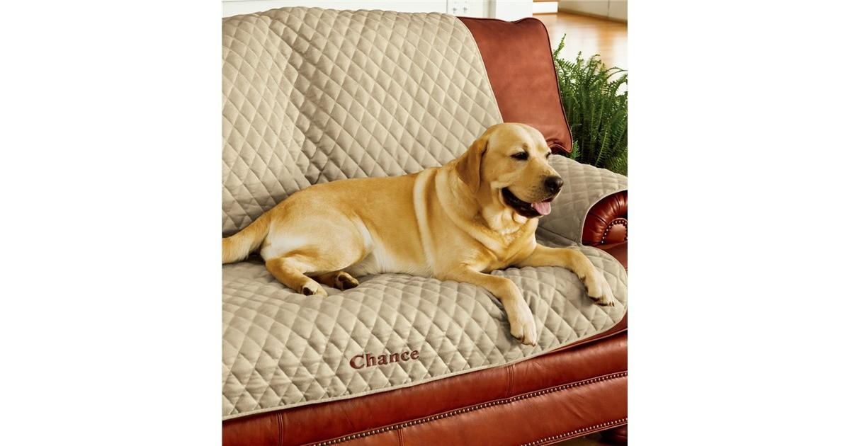 Pet Sofa Cover Collection Accessories