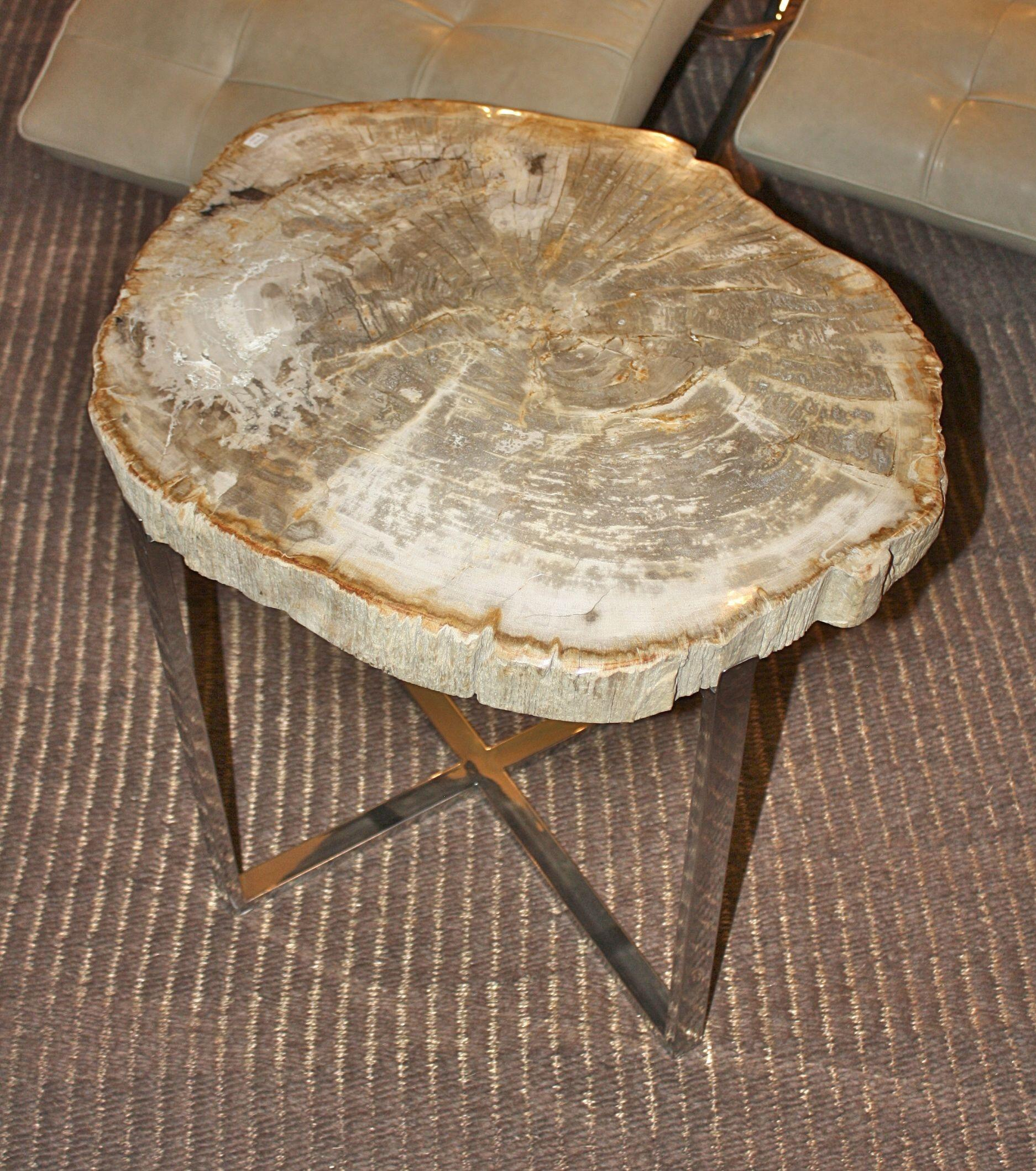 Petrified Wood Slice Side Table Unique Accent Tables