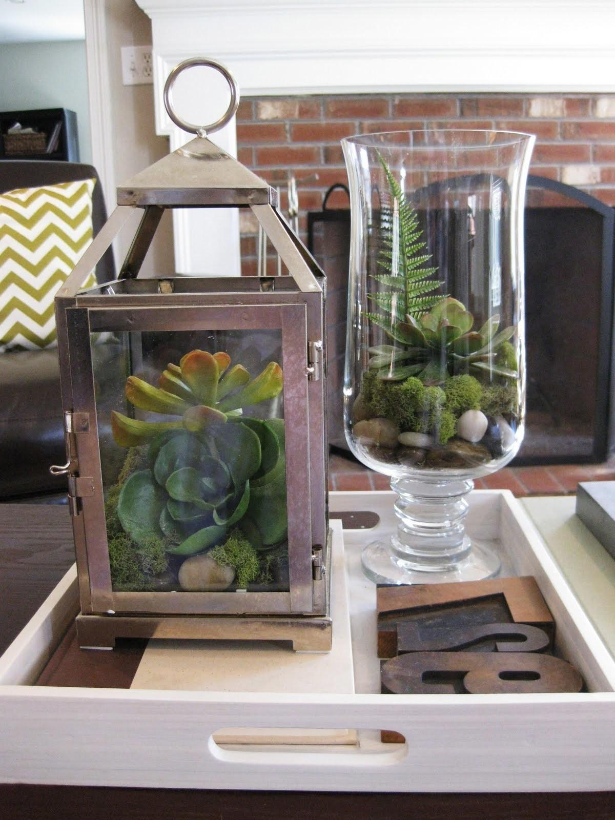 Pewter Sage Diy Faux Terrariums