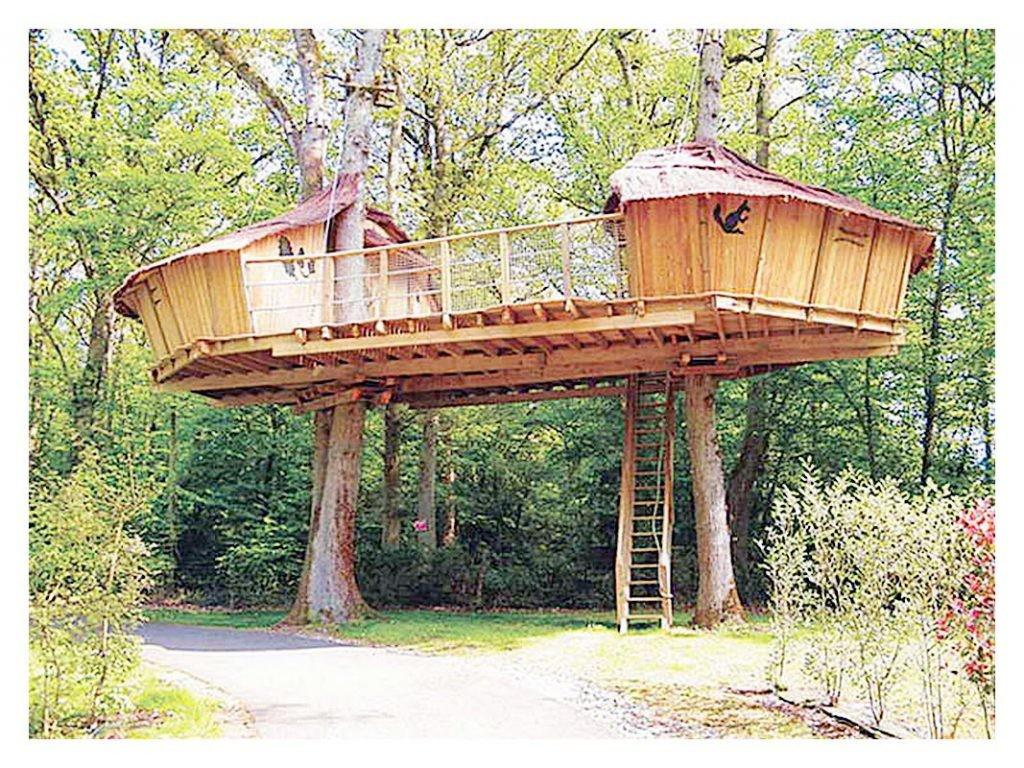 Plans Building Tree House Inspirational Great