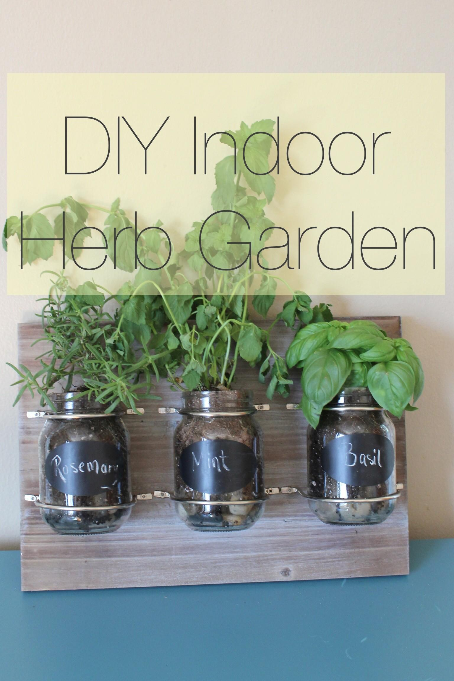Plant Indoor Herb Garden Using Mason Jars Hearthavenhome