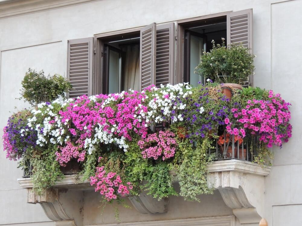 Planters Glamorous Flower Boxes Railings