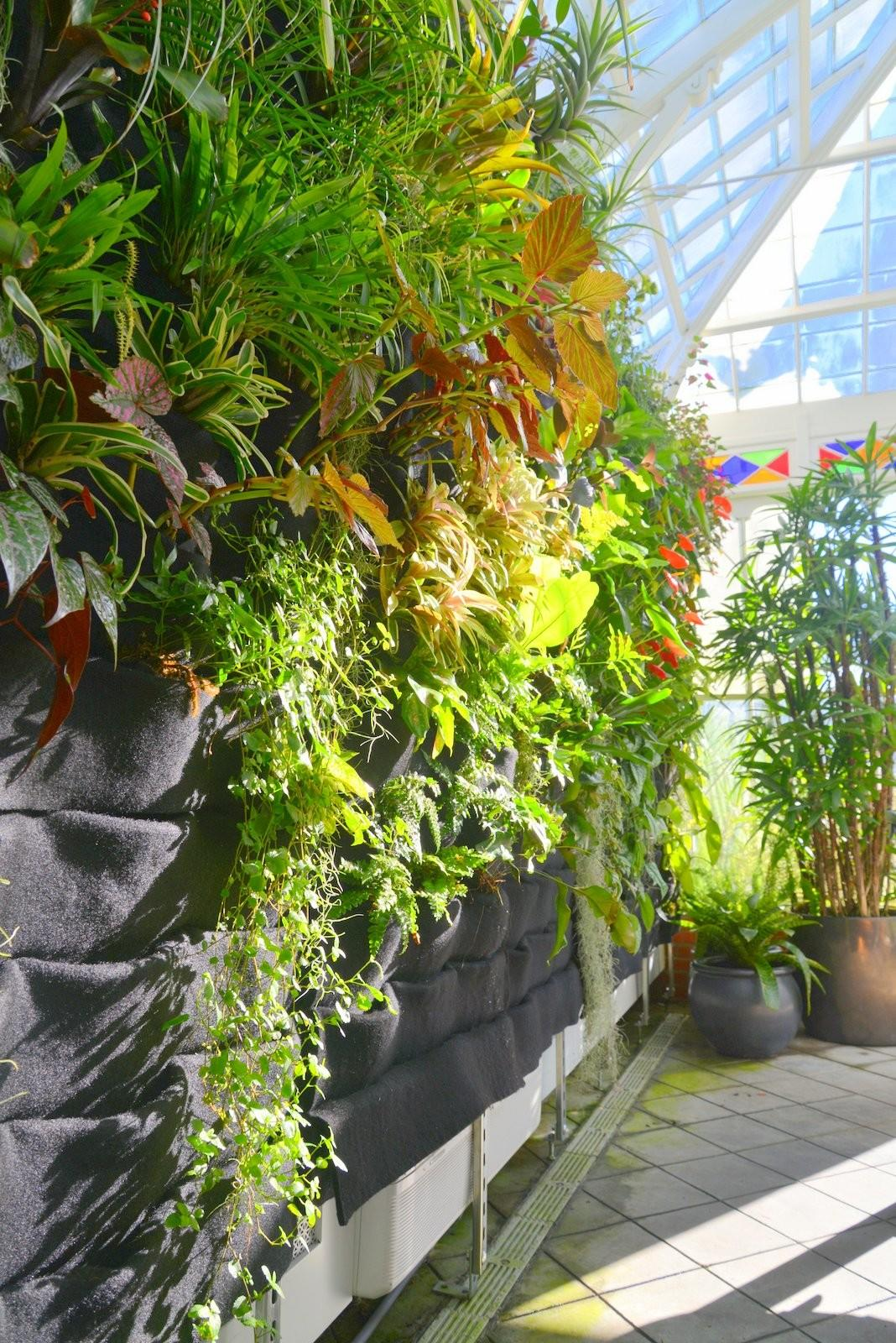 Plants Walls Vertical Garden Systems Conservatory
