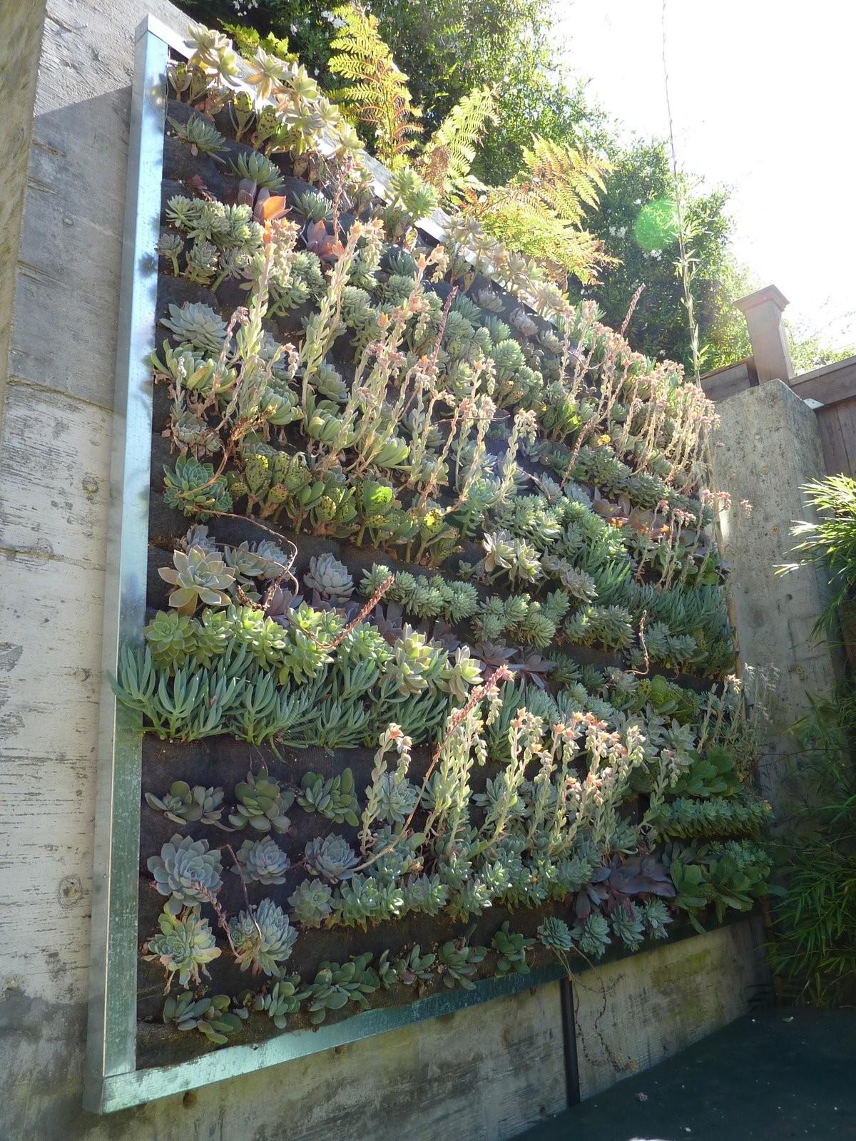 Plants Walls Vertical Garden Systems Mini Pocket