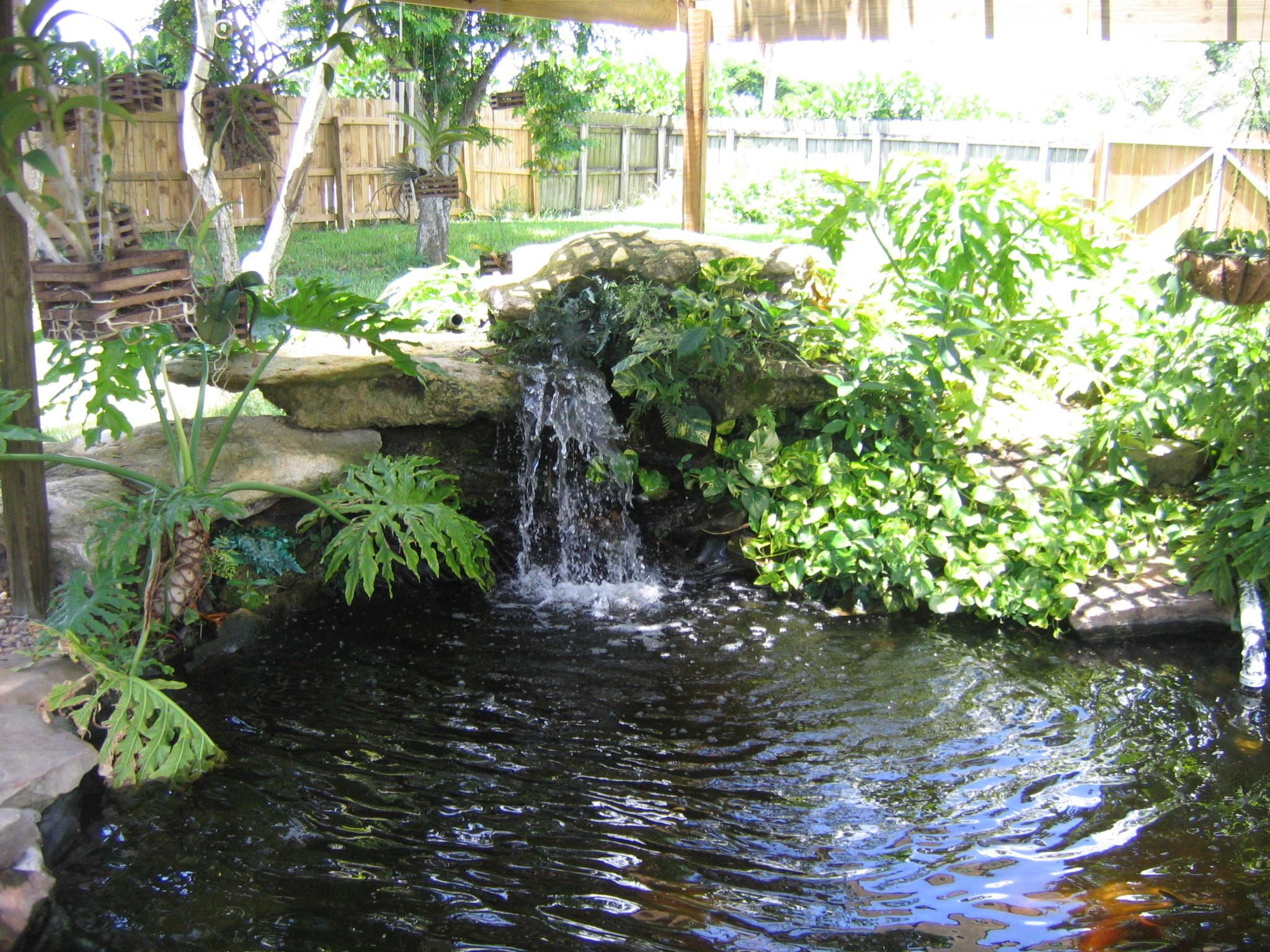 Pond Designs Important Things Consider Interior