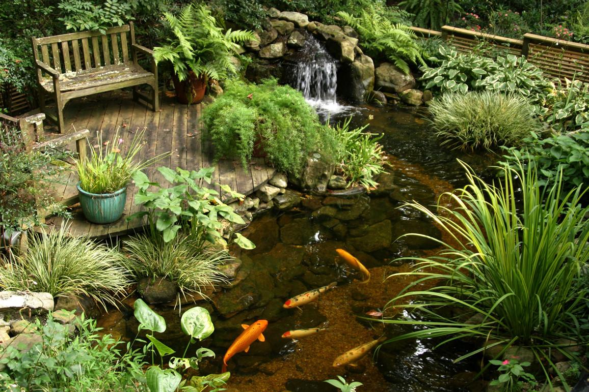 Ponds Pondless Water Features Sale Pond Doctor