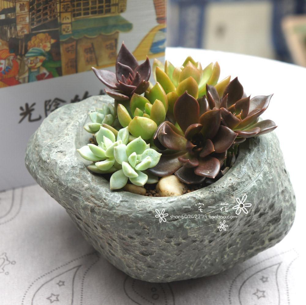 Pot Decoration Ideas Promotion Shopping